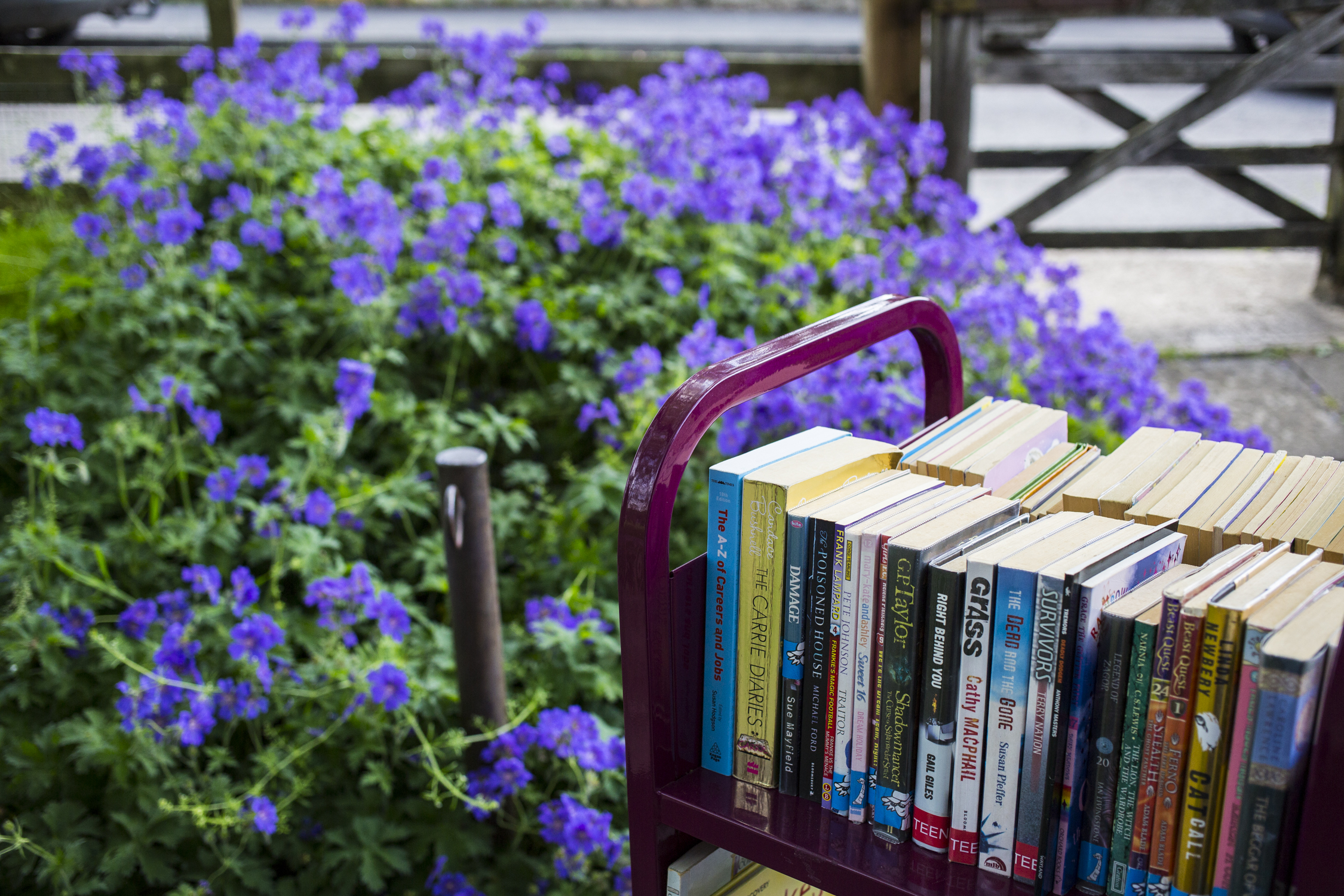 books on trolley outside Minchinhampton Community Library by Helen Green Photography